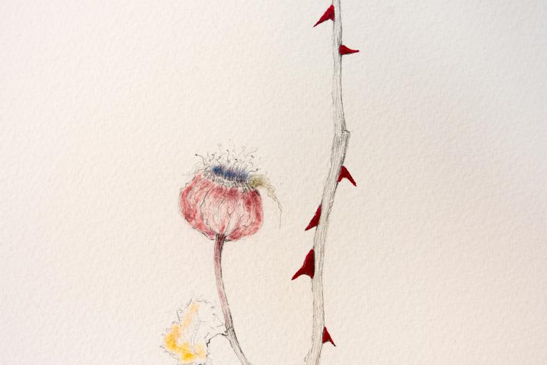 Acúleo I (detalle), 2019. Grafito, pastel y esmalte de uñas sobre papel. 105 x 75 cm